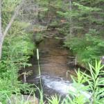 Cold Creek - Alden Highway 3