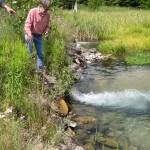 Cold Creek - FInch Farm Road