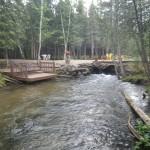 Cold Creek - no name
