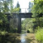 Finch Creek - Railroad Crossing