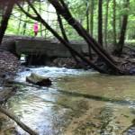Shanty Creek - Creekside Drive