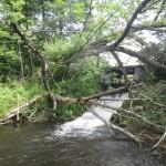 Shanty Creek - Old Hydropower Site