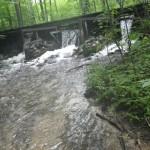 Shanty Creek - Pine Brook